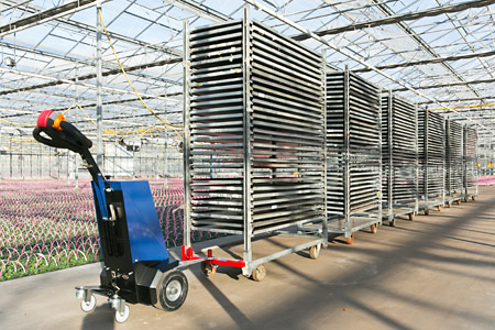 El remolcador eléctrico de Horti Innovations es una herramienta muy útil para mover carritos daneses pesados, contenedores CC o carritos de subasta.